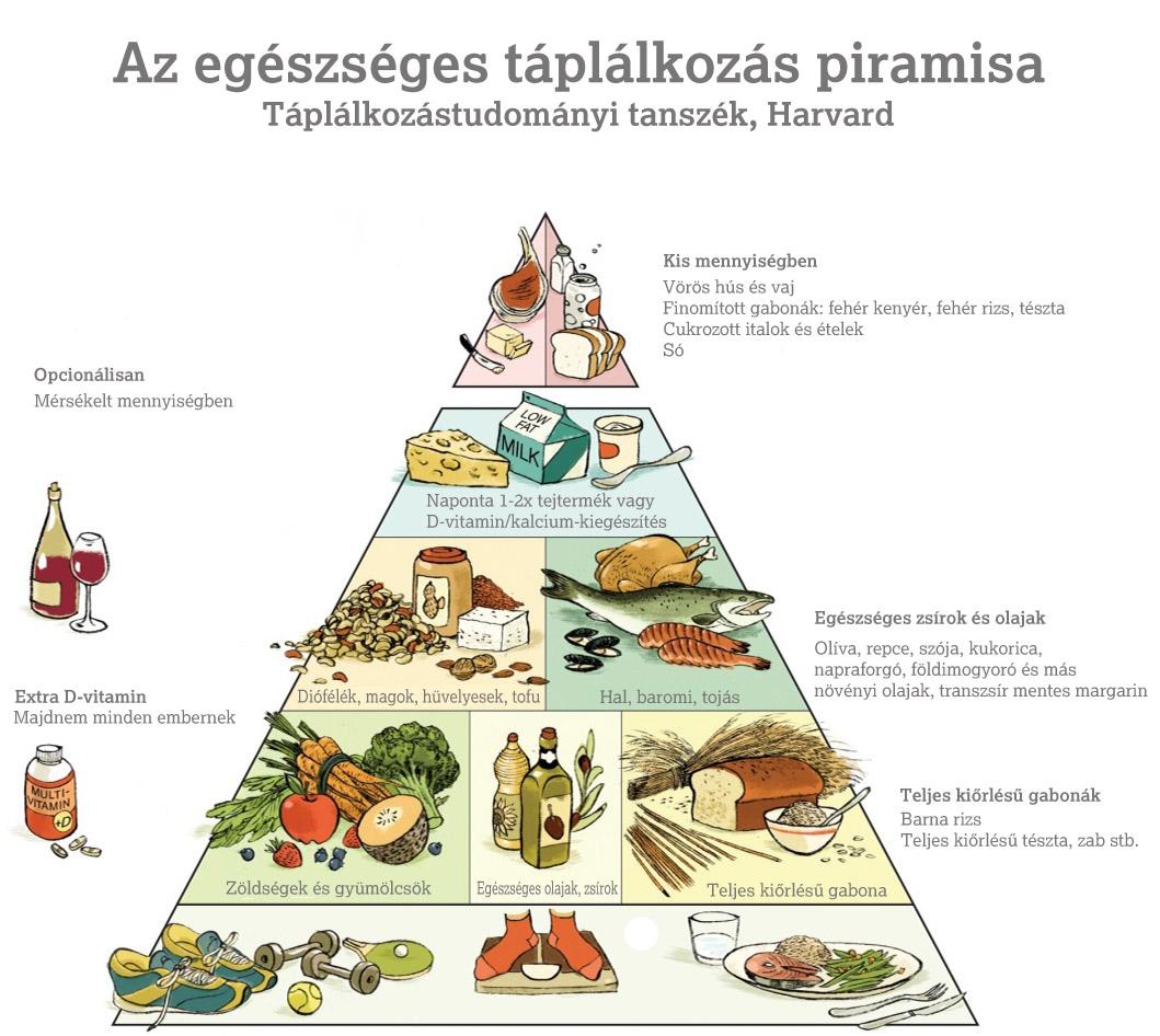 egeszseges_taplalkozas_piramis