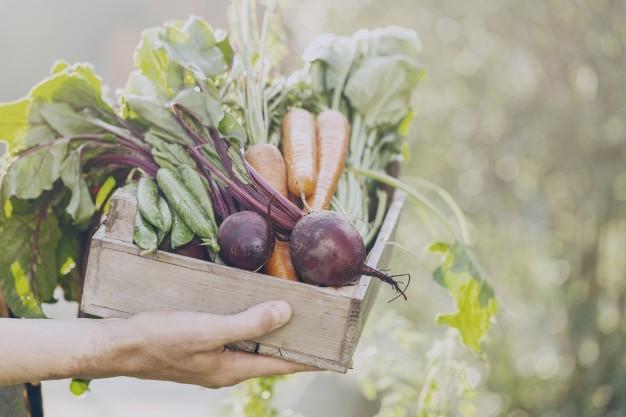 5 szuper egészséges zöldség tavaszra